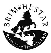 logo island brim hestar