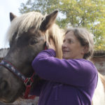 frau moser behandelt ein pferd am kopf
