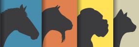 logo von Tierheilpraktikerin Alexandra Lehner. zu sehen sind der reihe nach ein pferd, eine ziege, ein hund und eine katze.