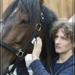 sybille moser führt pferd