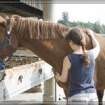 sybille moser hält pferd an brust und nacken