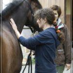 sybille moser streichelt pferd