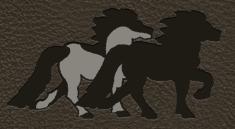 logo Islandpferdehof zur Wasserfuri